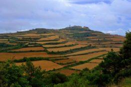 Vall del Corb i vall de l'Ondara. 1 De Santa Coloma de Queralt a Bellpuig
