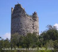 Els dominis de Querol i la torre de Pinyana